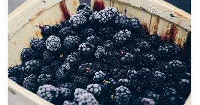 Making blackberry jam? Blended families? Read on to find out how these two are related.