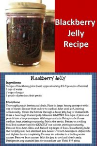 Homemade blackberry jelly cooked and canned