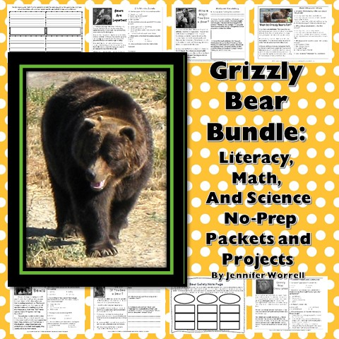 Grizzly Bear Bundle on TPT