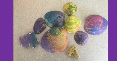Shells Colored with Easter Egg Dye