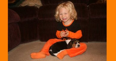 When your kids grow up with a dog, they will make wonderful memories together if they don't take out your house first...