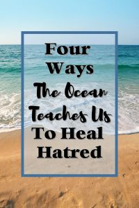 Read on to find out how the ocean can teach us to heal hatred and mend the divide that is taking over our nation.